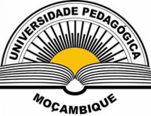 Pedagogical University Partner Leads